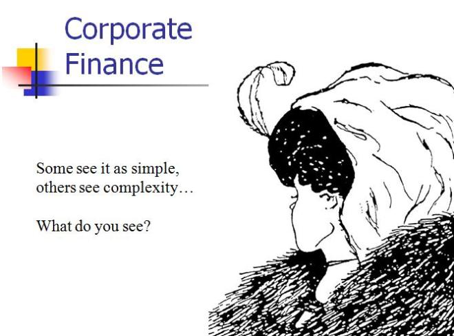 Corporate Finance 2011 Perspectives