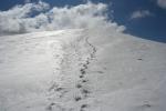 Droga na szczyt