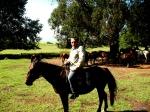 Drakensbur, Underberg, Khotse Horse Trails