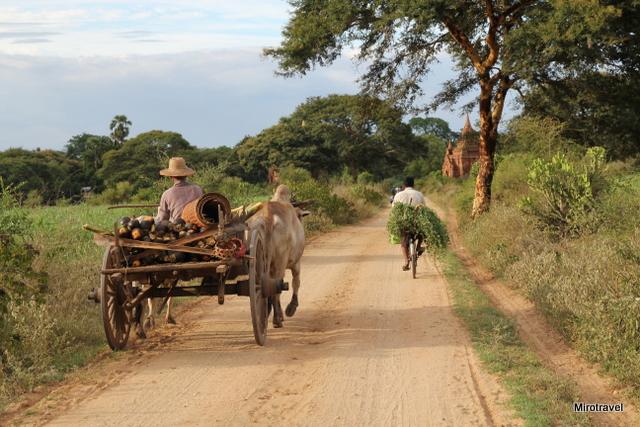 wiejskie życie w Birmie