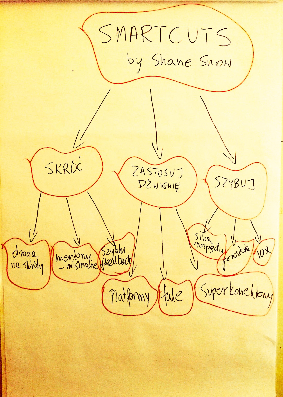 Smartcuts Shane Snow streszczenie po polsku